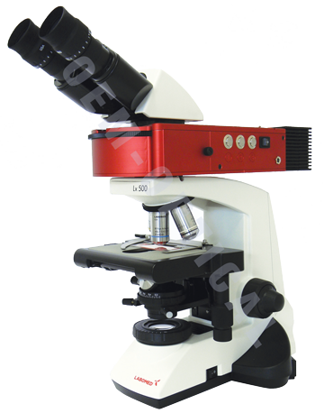 Labomed Lx500 Led Fluorescence Microscope