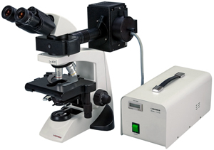 LABOMED Lx400 Fluorescence Microscope; quality Infinity corrected Plan optics, 50 watt mercury arc epi-fluorescence illuminator. Fluorescence without the high cost. Ideal for laboratory, research, academic biological applications.